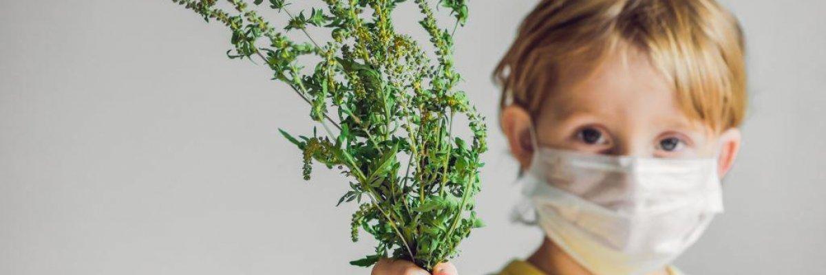 Szénanátha gyerekeknél – nem nátha, hanem allergia!