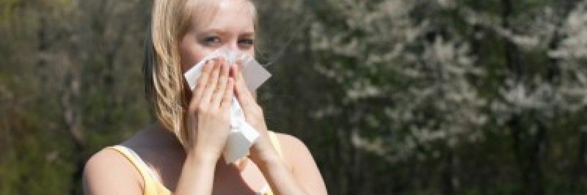 Ezekben a hetekben a mogyoró és az éger allergiások tüsszögnek