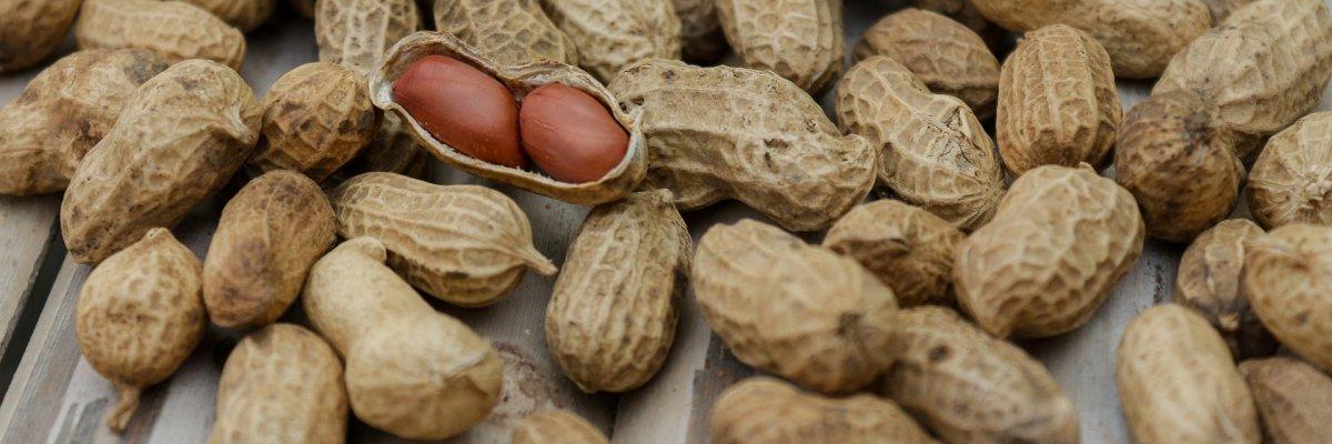 Enyhe vagy súlyos tüneteket okoz a földimogyoró allergia?