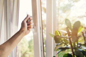 Parlagfű allergia ellen házilag