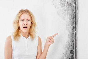 Penész allergia: ősszel rosszabbodnak a tünetek
