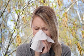 Nyírfapollen allergiásként már most gondolnia kell a kezelésre!