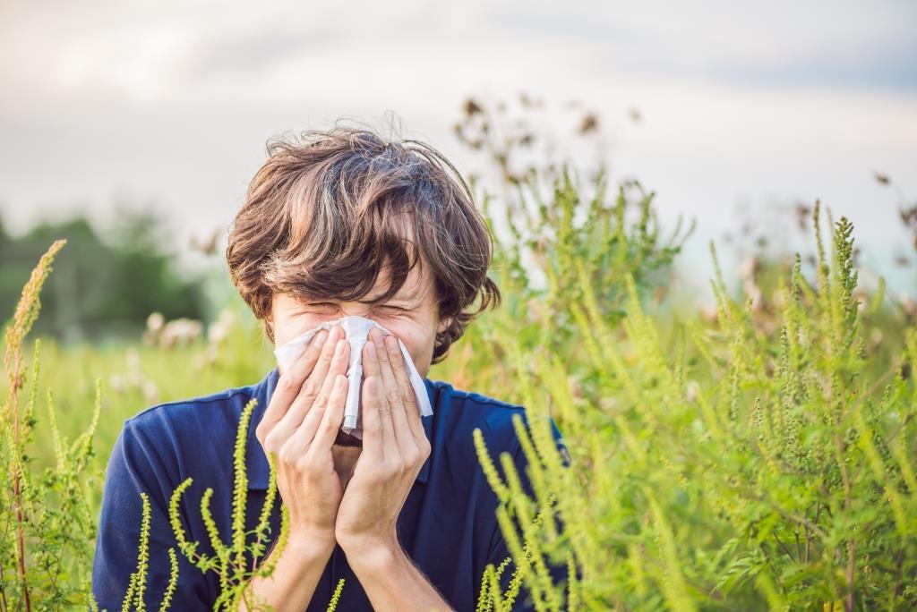 Allergiás lehet a parlagfűre? Még a szezon előtt vizsgáltassa ki magát!
