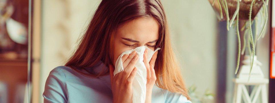 Poratka-allergia, porallergia