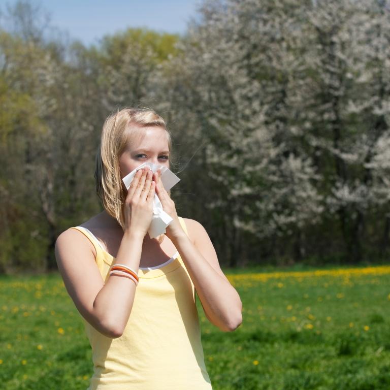 5 tanács, amit minden pollenallergiásnak érdemes megfogadnia